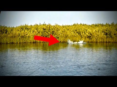 Massive Redfish Blowup! Port O Connor (5-18-20)