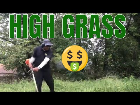 The higher the GRASS the more we kick ASS! 9.13.18 thumbnail