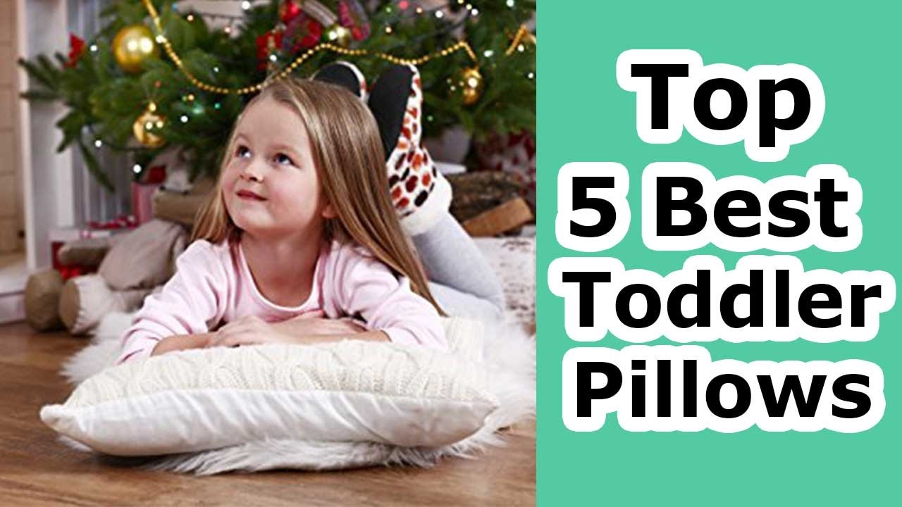 guide best main toddler and pillow buying pillows reviews june