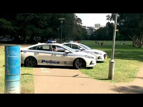 NSW Police Commissioner Defends Officers After Sydney Parks, Beaches Were Raided
