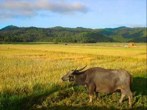 My Hometown Claveria in Cagayan Valley