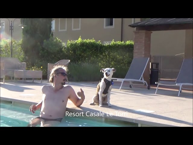 Hotel pet-friendly a Ponsacco - Casale Le Torri
