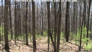 Glidewell Trail Adena Site, Brookville, Indiana
