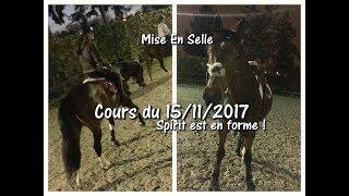 Cours du 15/11/2017 - Mise En Selle - Spirit est en forme !