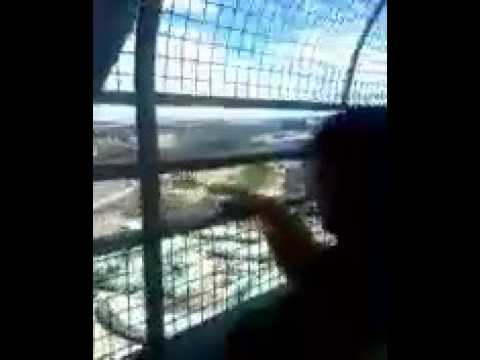 My travel on the The TV Tower-Brasília-DF.BRAZIL.