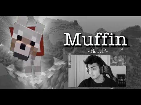 The Death Of Muffin