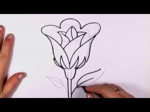Cara Menggambar Bunga Mawar Dengan Pensil - YouTube