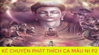 Bạn Có Duyên Với Đức Phật Khi  Nghe Kể Chuyện Đêm Khuya Phật Thích Ca Mau Ni Truyện Phật giáo P2