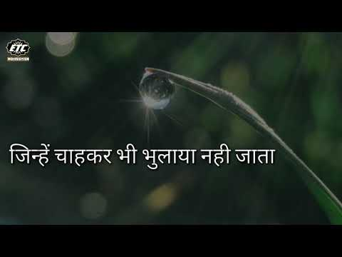 💓 Heart Touching Lines Hindi Video, Best Emotional Lines On Life, Motivational Video, ETC