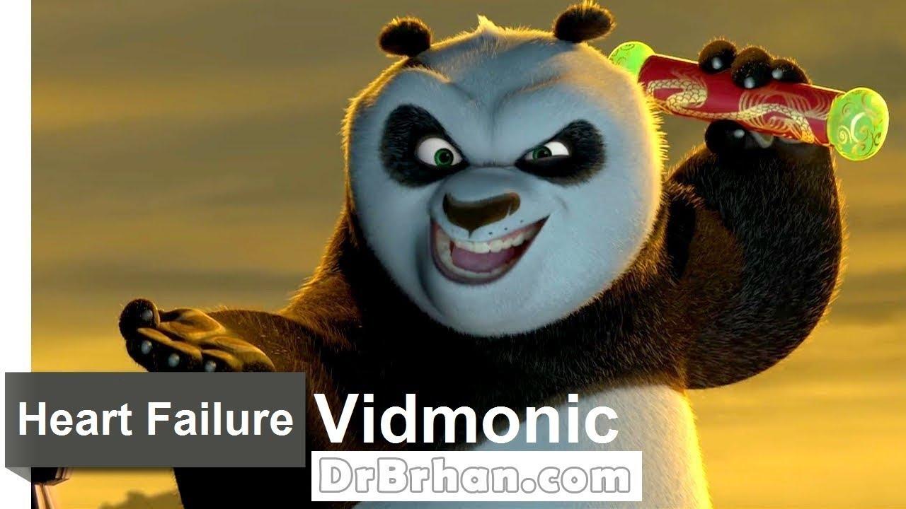 Kung Fu Panda 1 Kinox
