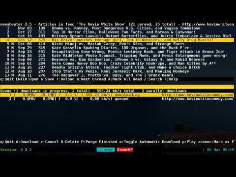 Podbeuter - Podcast Downloader for Newsbeuter - Linux TUI