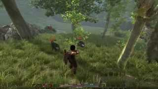 Arcania : Gothic 4 pc gameplay 720p HD