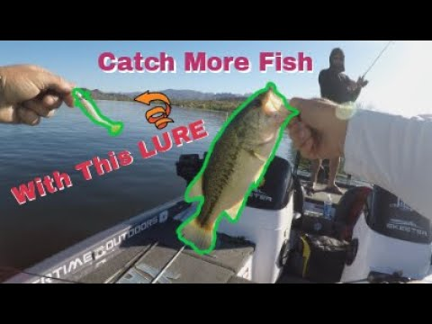 HOW To CATCH 50+ Fish Right NOW (Fishing Bartlett Lake AZ)