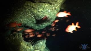 Lobster Cave Kona, Hawaii