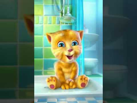funny talking tom Cat winter hindi video
