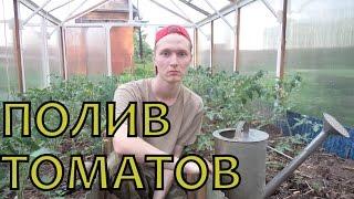 WATERING and FEEDING TOMATOES. ПОЛИВ томатов + ПОДКОРМКА золой. Как поливать ПОМИДОРЫ в ТЕПЛИЦЕ(THIS VIDEO HAS ENGLISH SUBTITLES! Уже в начале июля на низкорослых кустах уже вовсю наливаются плоды, а высокорослые томат..., 2014-07-04T07:02:04.000Z)