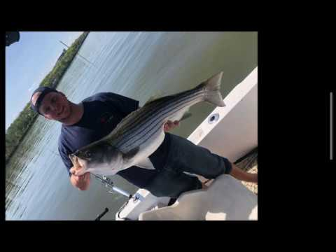 2020 Striped Bass Fishing On The Hudson River Episode #1