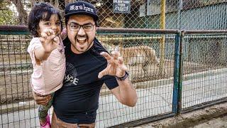Mano's Day Out   Karachi Zoo   Kashan