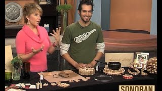 Sonoran Living Live on abc 15 - Cork Crafts