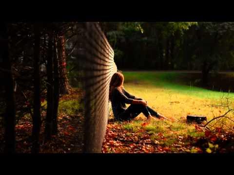 Reamonn - Tonight (Jam El Mar Remix) [HD]