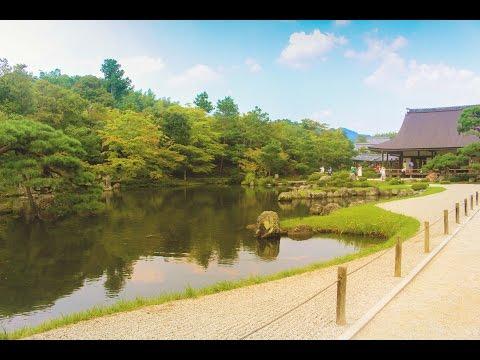 Summer in Kansai : D (30 Jul - 3 Aug 15)