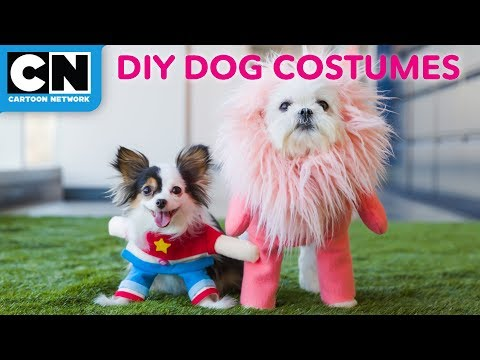 steven-universe-and-lion-puppy-no-sew-costumes- -let's-build- -cartoon-network
