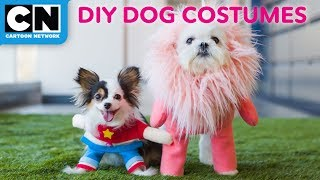 Steven Universe and Lion Puppy Costumes | No Sew Tutorial | LETS' BUILD