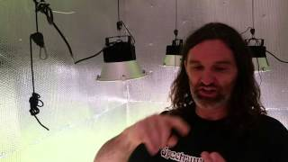spectrum king led 400 grow lights vs kind k5 xl750 illumitex neo sol ds 1000 watt hps day 11