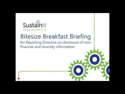 Bitesized Briefing - New EU Rules on Non Financial Reporting