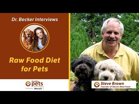 Dr. Becker and Steve Brown on Raw Food Diet for Pets (Part 1)