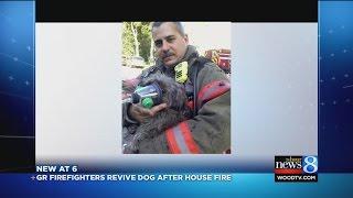 Trending: Gr Firefighter Performs Cpr, Saves Dog