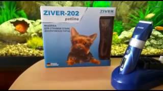 Обзор Машинки для стрижки собак Ziver-202