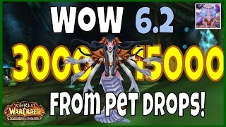 WoW 6.2 Gold Guide: Farming Serpentshrine Cavern Raid for Possible Pets up to 15000 Gold, WoD