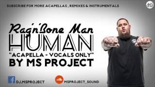 Rag'n'Bone Man - Human (Acapella - Vocals Only)