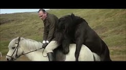 Von Menschen und Pferden | Deutscher Trailer