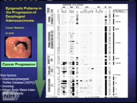 TRACO 2014 - Angiogenesis; Epigenetics