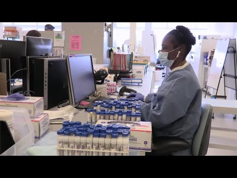 Inside Look at COVID 19 Testing in Lab