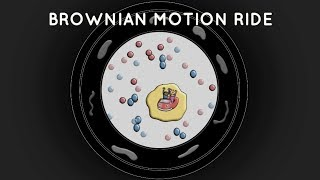 BROWNIAN MOTION RIDE--Audio-Visual Poem