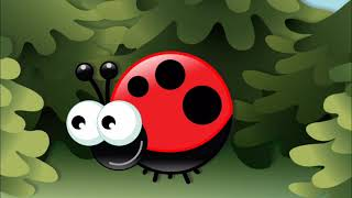 Tittut För Små Barn - Recension och Preview - App for Kids Spel - Pickaboo Animals Stomp Baby Play