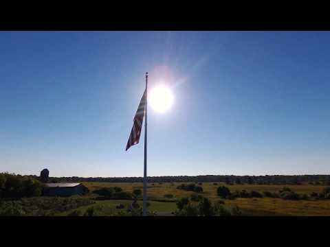 Sunporn Free Video