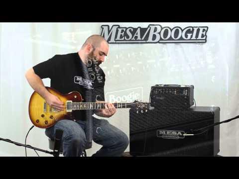 Mesa/Boogie Mark Five: 25