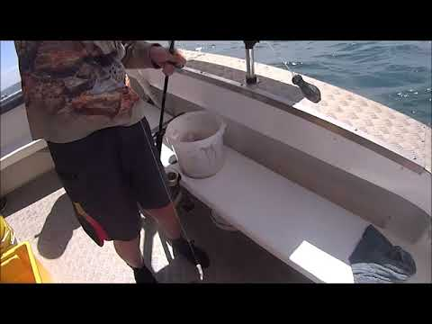 Queens Cliff Fishing Charter