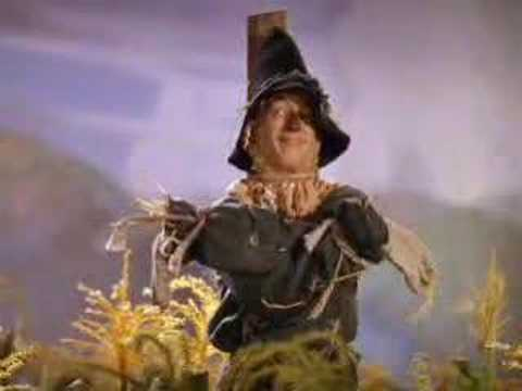 Wizard Of Oz Doroty Meets Scarecrow Youtube