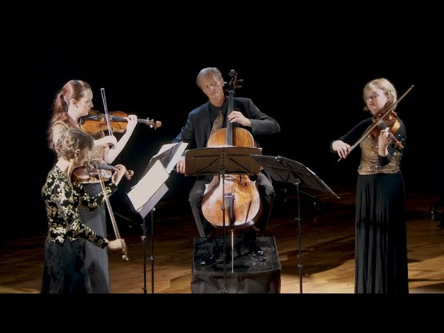 Debussy - String Quartet in G minor - iii.  Andantino, doucement expressif (Mvt 3/4)