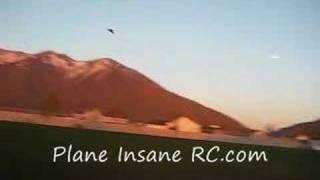 Plane Insane Rc Wild Wing W/brushless Motor