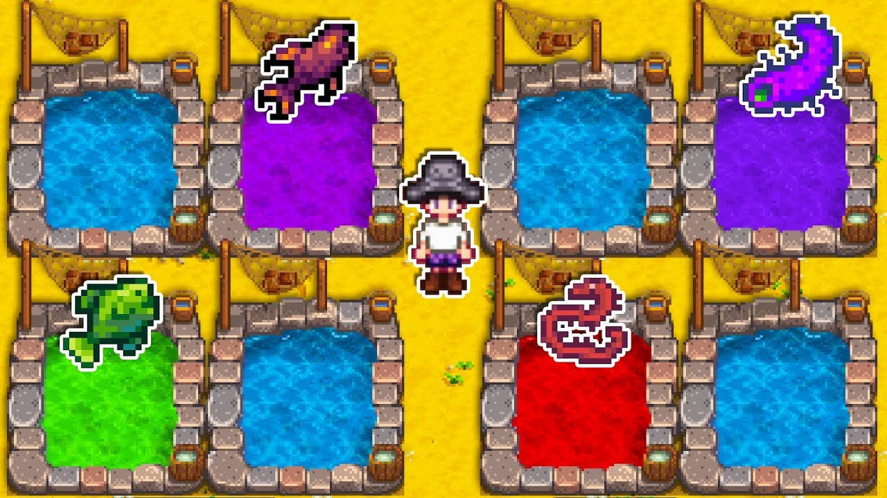 When I Made A Fish Pond For Every Fish In Stardew Valley Youtube