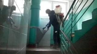 видео Дезодорация помещений