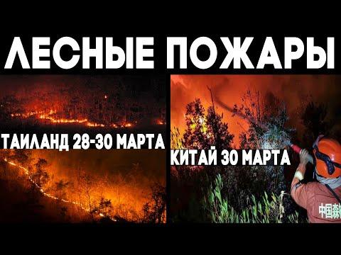 Катаклизмы последних дней - выпуск 9 ! Лесные пожары - Таиланд и Китай Wildfires ! Climate Change !