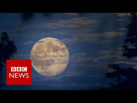 What is a 'super blue blood moon'? BBC News