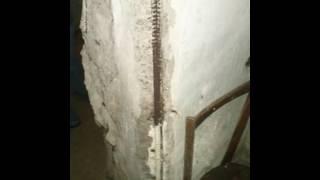 разрушение защитного слоя бетона (the destruction of the protective layer of concrete)
